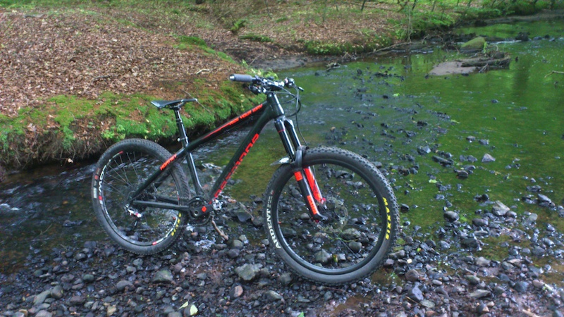 Dartmoor Hornet with a Rockshox Pike rct3 and a Reverb Stealth Hope Tech E4 brakes and the FR stem and seat clamp Sram X01 11speed Sram X0 hubs Enve DH carbon handlebar Shimano XTR 9020 trail pedals Selle Italia SLR Titanium seat Maxxis Tires MRP AMG chainguide......