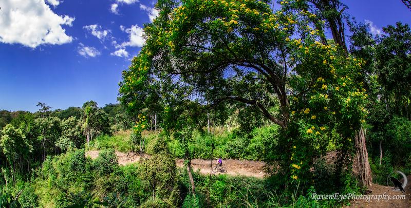 Exploring Costa Rica by Mountain Bike