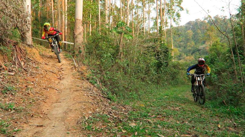 Enduro Vs Downhill