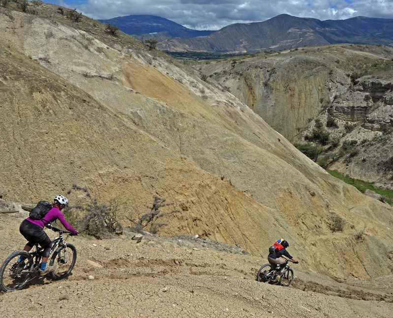 On day 3 of our Ecuador Mountain Biking trip we descended the Chota Trails from Ibarra at 2550m to 1600m It starts at high Andean cordillera at Ibarra with its typical Imbaburra forest then drops down through desert that constantly changes. The lucky part is that just three days ago it had rained so the dirt and sand was about as tacky as it gets. The cacti were flowering and even usually sandy loose corners were in fine shape. We dropped down to the highway just N of Salinas where we had our lunch and a swim. Very bourgeoise - excellent ride. In less than a couple of hours we were back in Quito. That seems to be one of the lesser known draws of Ecuador. Everything is so close so much diversity packed into a compact area.