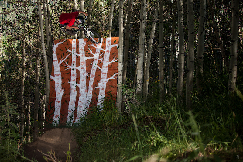 Stunt wall deep in the woods
