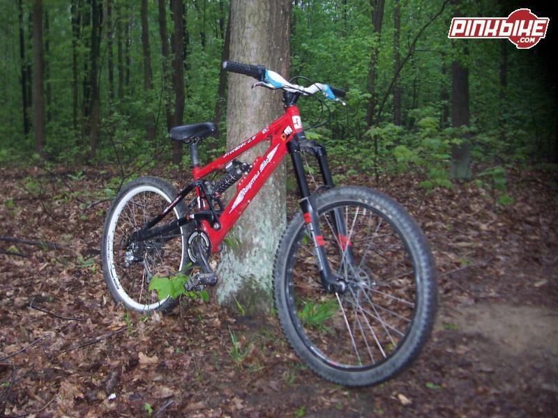 DM Dangerous Mike FR 2.0 whit 66 vf 2006 170mm  my kick'n ass bike  I love him ;P  my camera is sckd