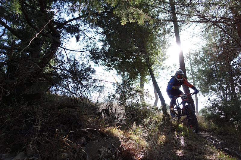 SP2 A short stint in the open then plunged you into the trees and along a long off camber
