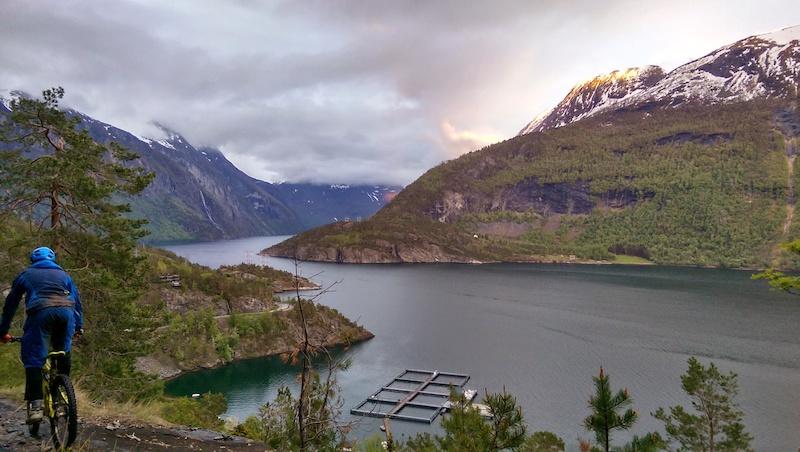 Roadtrippin the Norwegian Fjords