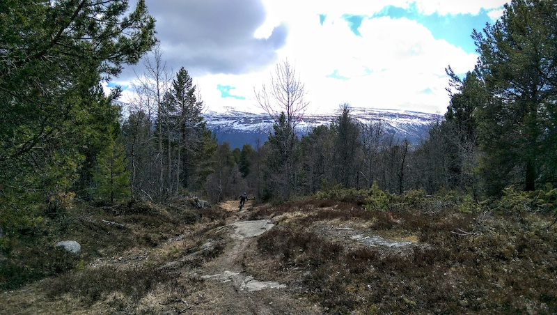We rode up the hill which turned out to be quite dry however once we reached about 700m we hit the snow line we tried to ride on but quickly realise it wasn t going to be worth it and turned back. Once we were clear of the snow again we could open it up on the singletrack of Raudhovden