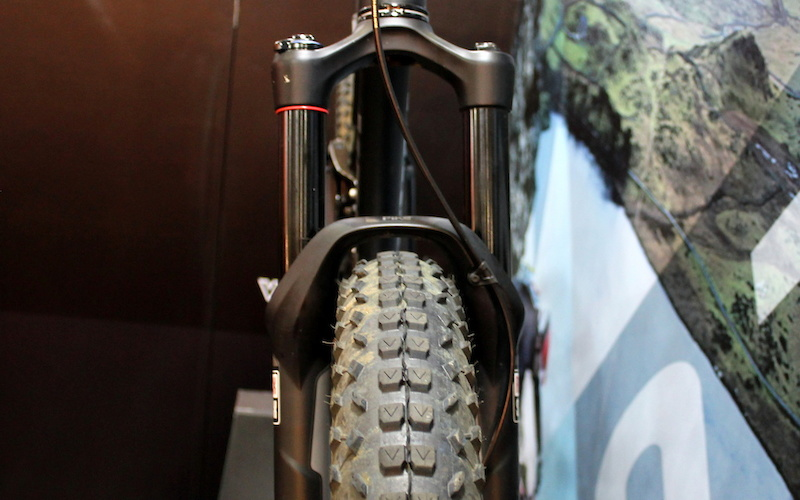 plus tire in 29er pike