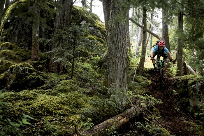Mountain biking in Whistler valley.