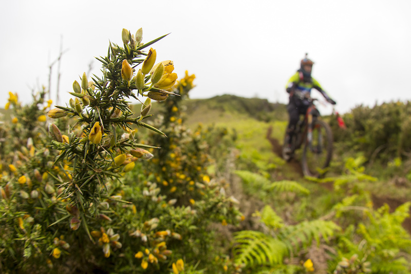 Photos from Enduro Challenge 2016 organized by Freeride Madeira.