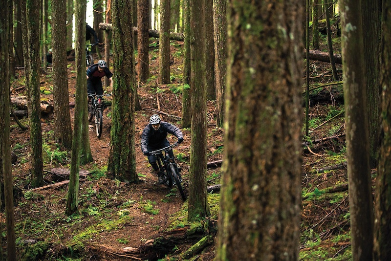 Old Growth Culture Meets New Age Riding