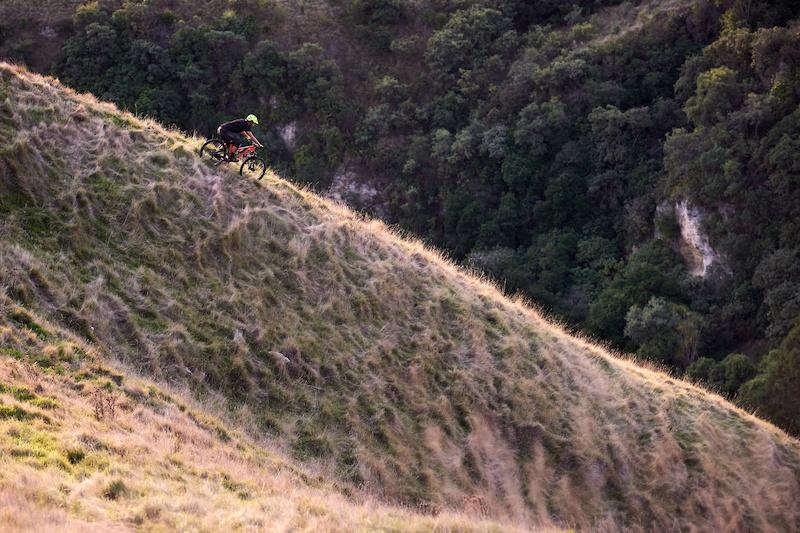 Riding a sun lit ridge on Te Mata Peak. Self portrait shot using a wireless shutter release.