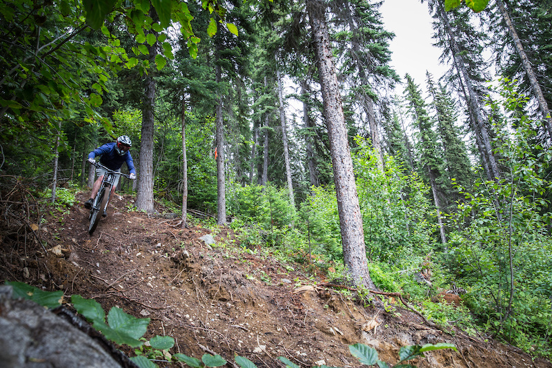 Scoping out the brand new Resurrection trail in the Sun Peaks Bike Park between storms with Tourism Sun Peaks Kyle Taylor.