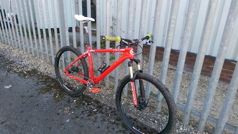 06d3a001846 On One Whippet For Sale