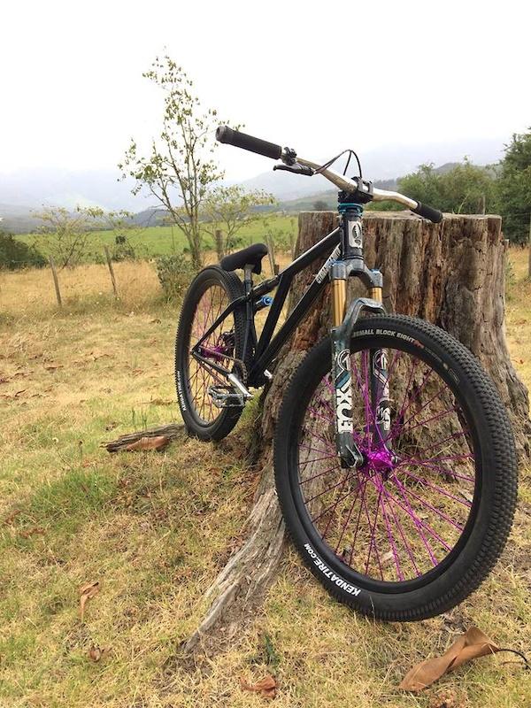 Prototype Altruiste Bikes Big-Air frame