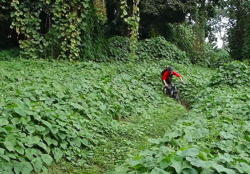 Guatemala Montain Biking