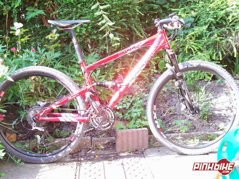 A religious experience moment when on my giant anthem2 with the DT-XR1 wheels nicked from my scott and my old xtr rear mech