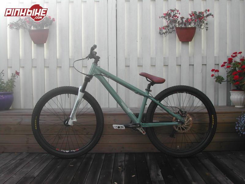 My bike Giant STP 2007