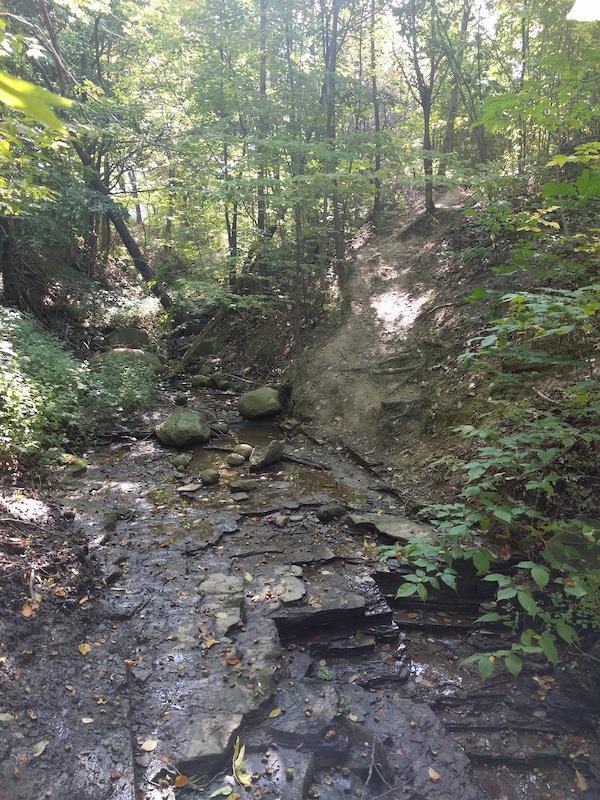 Finger Lakes Trail Letchworth Branch Mountain Biking