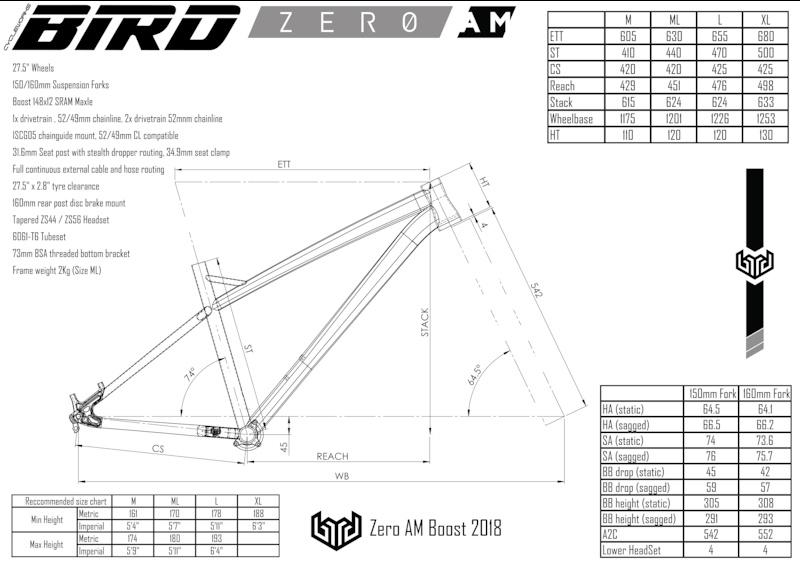 Bird Zero AM