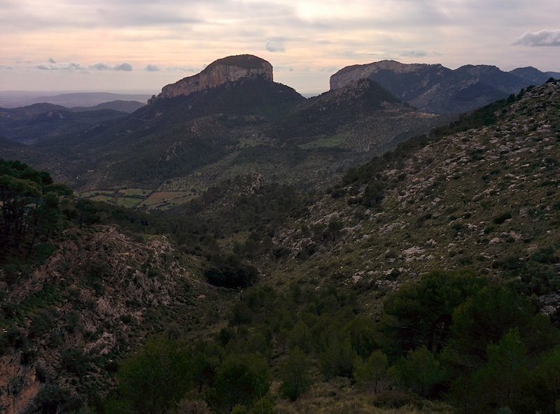 Wild side of Mallorca