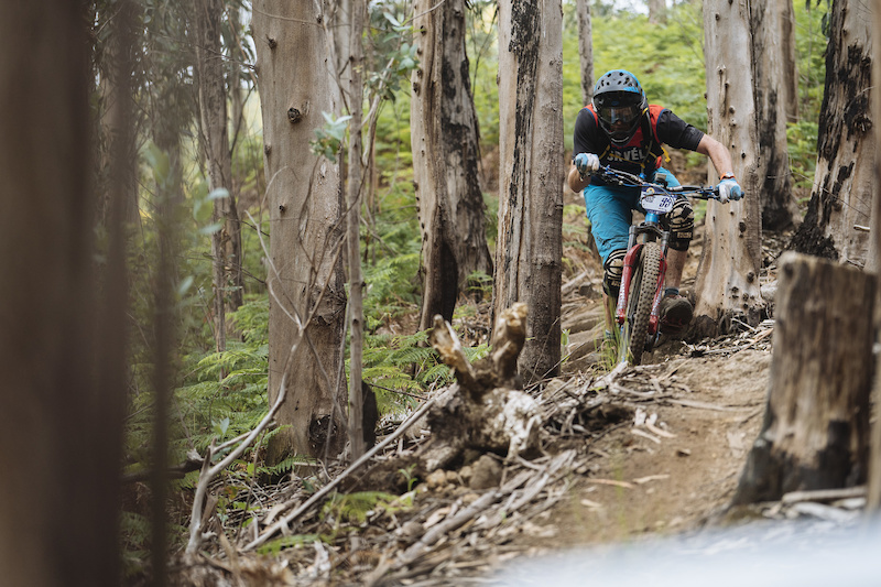Tight natural woods made up the bottom half of the wests stages today.