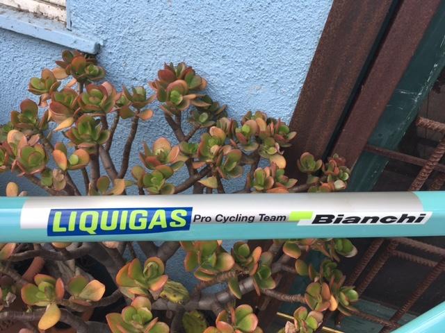 0 Bianchi Liquigas Team