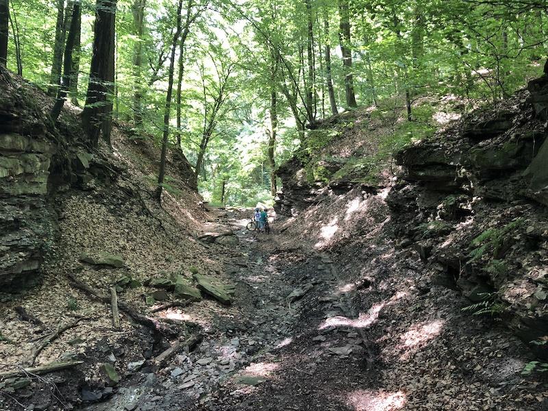 single trail heilbronn