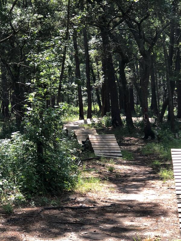 North Charleston South Carolina Mountain Biking Trails Trailforks