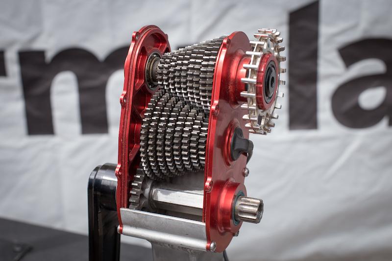 First Look: Cavalerie's Blackbird Carbon Gearbox Bike