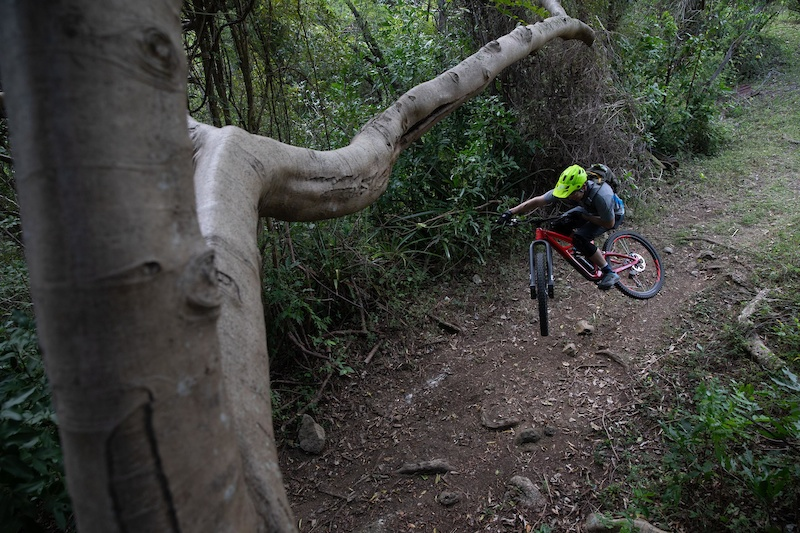 Jeff Kendall-Weed's Local Loam series visits Puerto Rico!