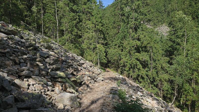 Polyanytsya, Ukraine Mountain Biking Trails   Trailforks