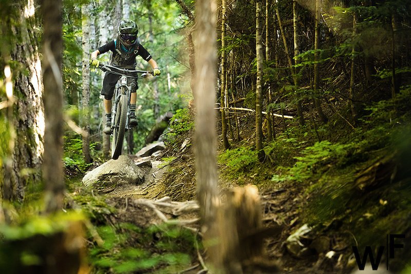 Whistler