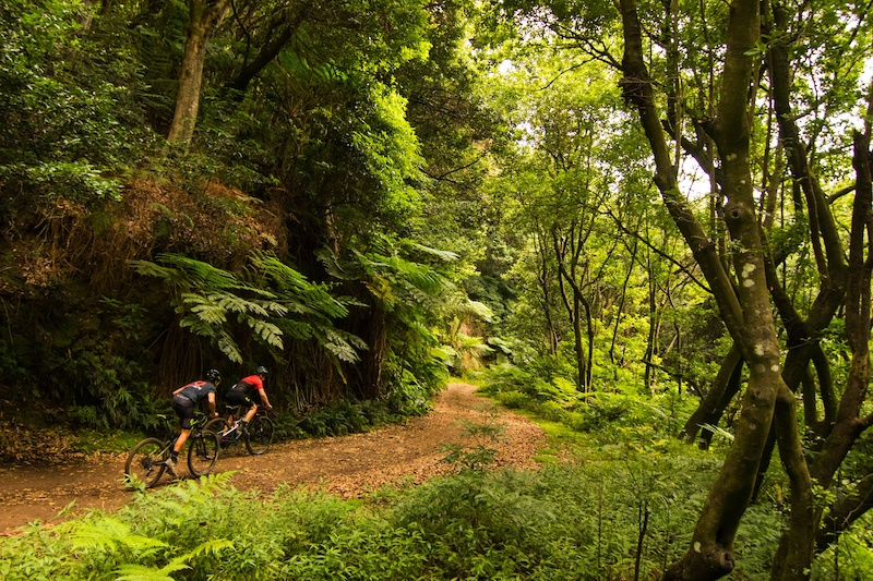 Details Announced for Madeira Bike Race 2020 - Pinkbike