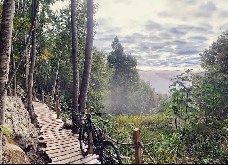 Overlook Bridge