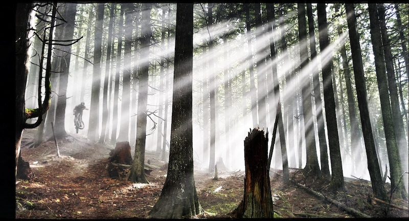 Building this trail years ago these beams would shine through often and signal time for a shot of whiskey. It s a cold dark and foggy part of the mountain my favorite.