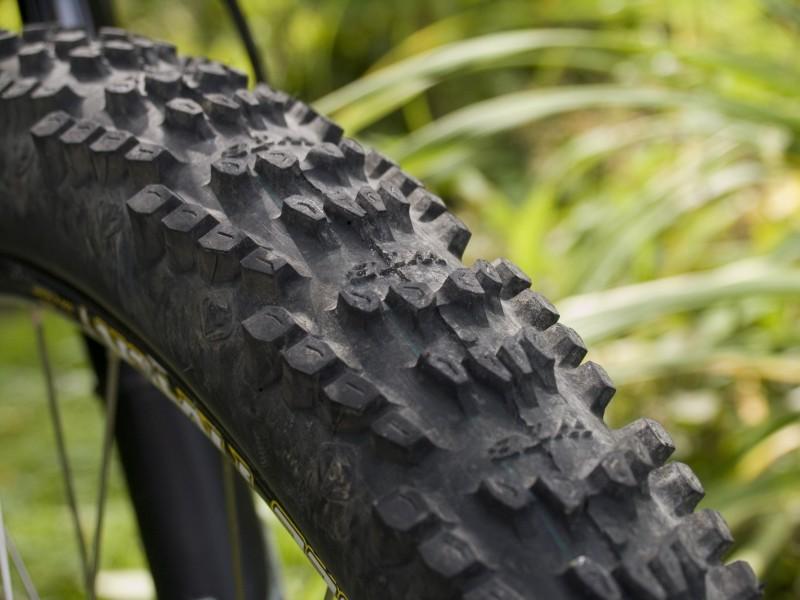 WTB WeirWolf tires