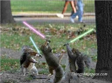 Starwars chipmunks