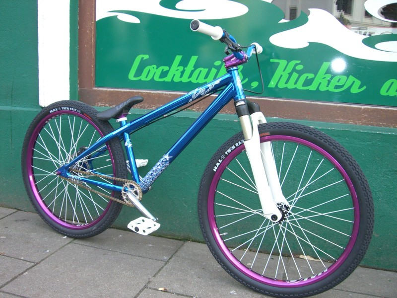 Essential Bikes / custom made