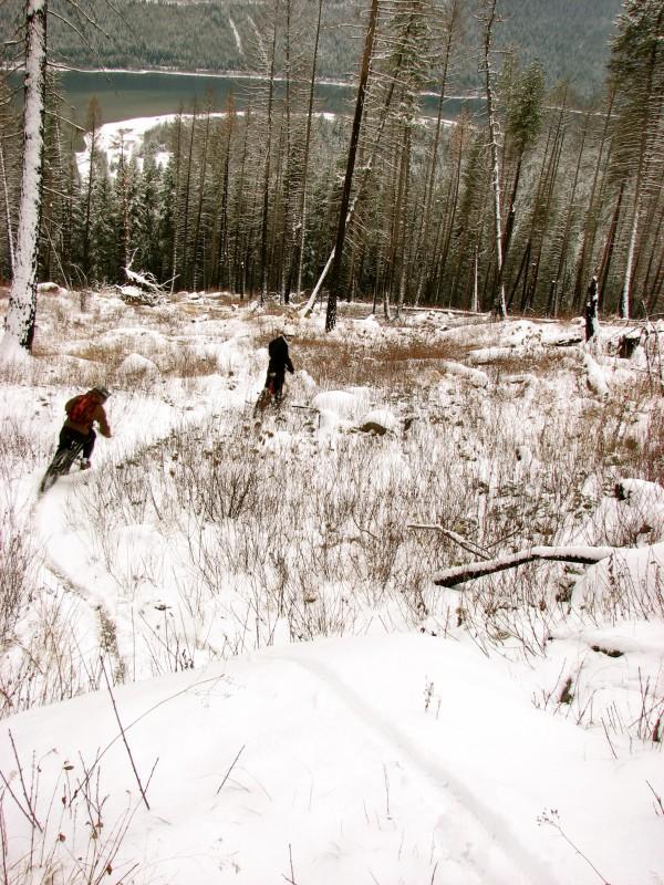 Shredding this trail!