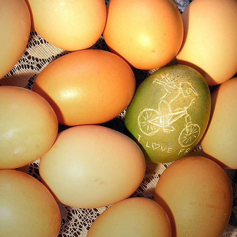 Green egg by serfer.