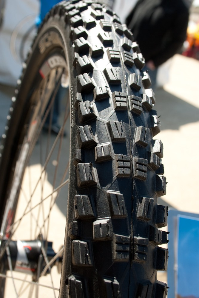 Schwalbe Wicked Will