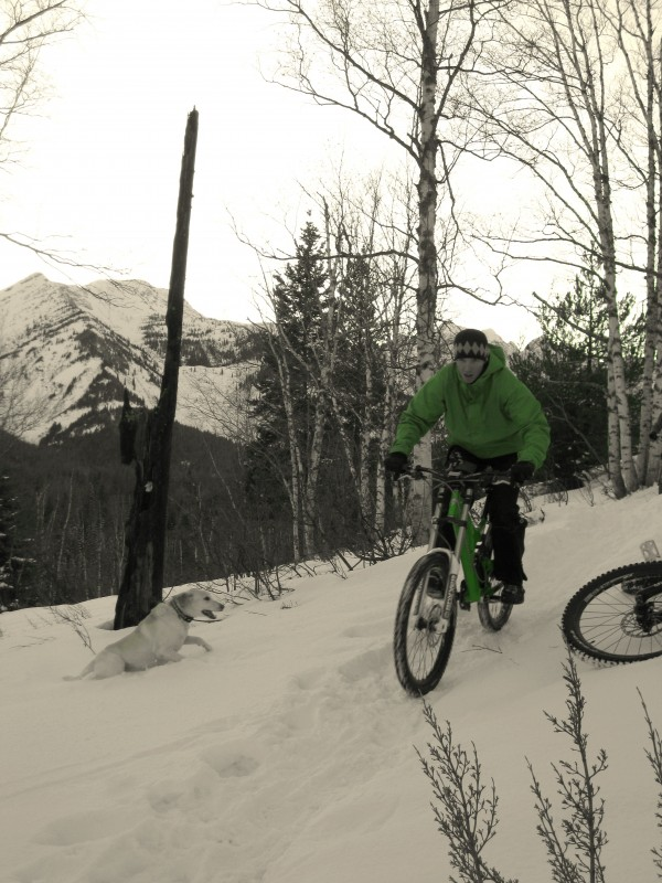 trail hard packed by snowshoers is a good time.