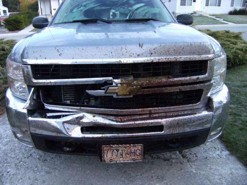 No1 At Gmc Truck After Hit A Deer In Hamilton Ontario