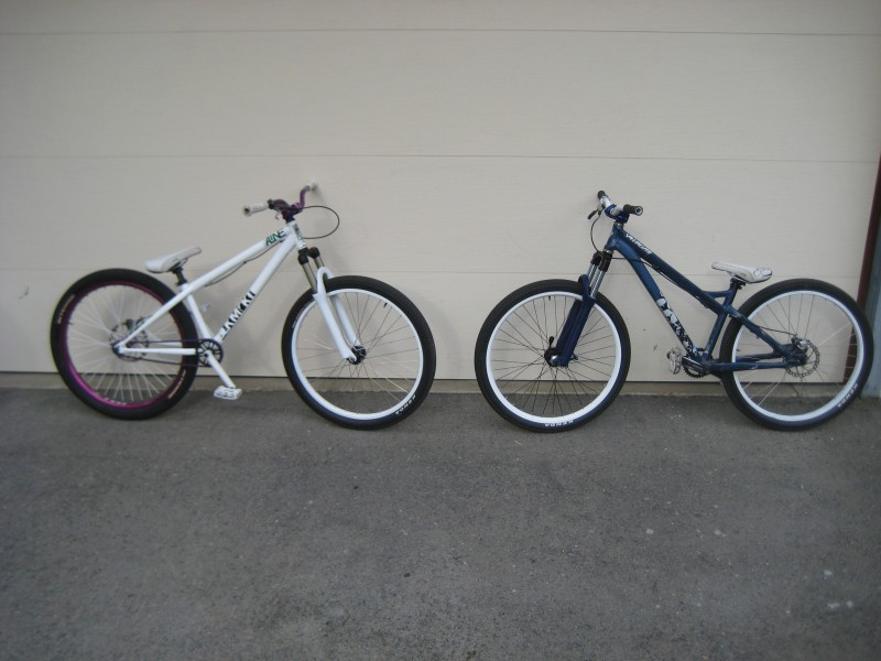 cam and freight's bikes