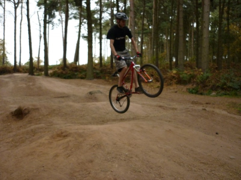 Great day in autmn at delamere.
