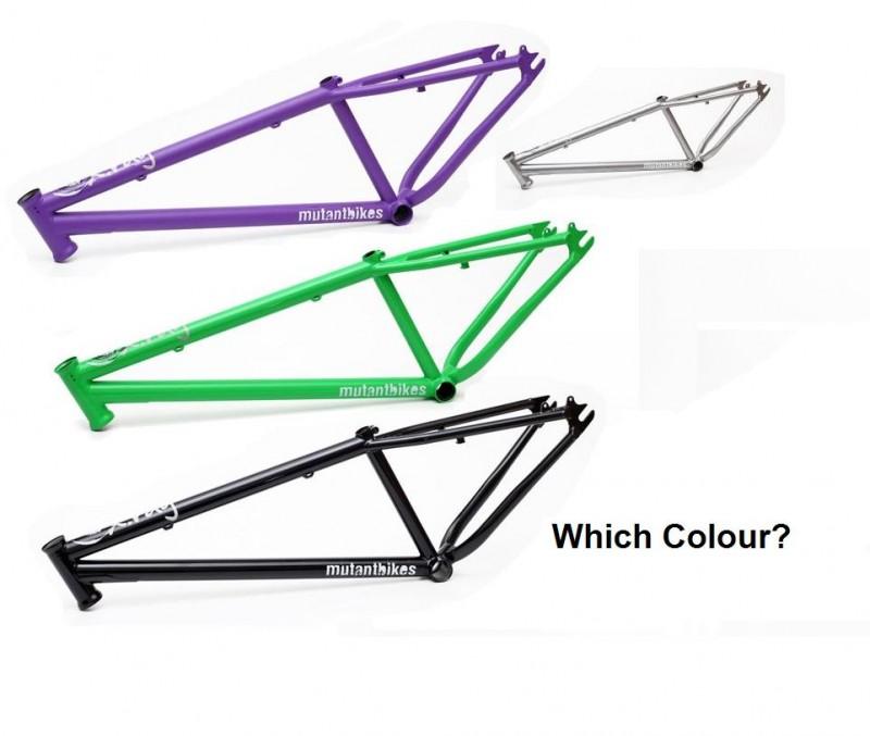 which colour?