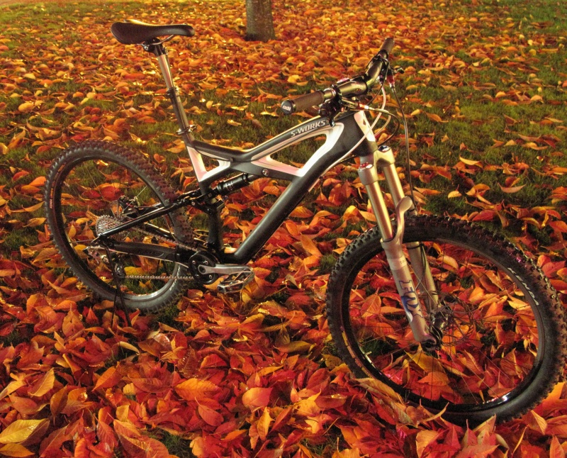 2010 Specialized Enduro S-Works