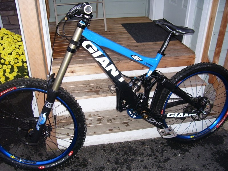 2009 Giant Glory for Sale
