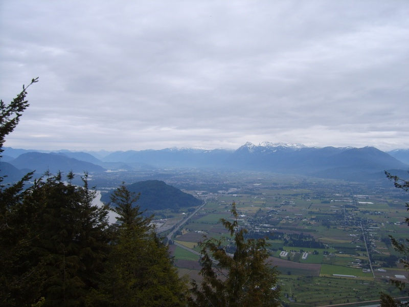 View up the Fraser Valley from the top of Sumas