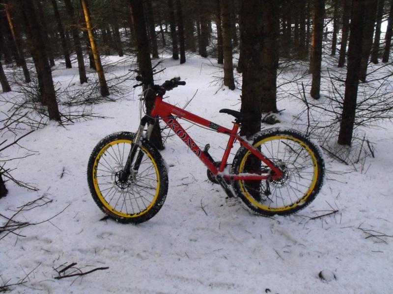 snow traks