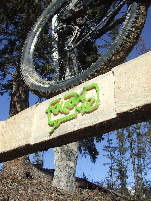 Trailbuilding has become more than a hobby... it's my life and I wanted to mirror that in my contest submission: I've included the logo into a skinny that is part of a trail I've built: skinnies, ladder bridges, step-up and step-down, banana boat and curved wall ride.